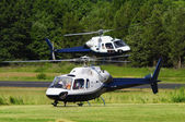 Two helicopters landing in a field — Stock Photo