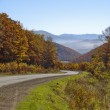 Mountain road to autumn wood — Stock Photo #5466505