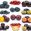 Set of different plums — Stock Photo