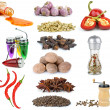 Set of different spices and condiments — Stock Photo