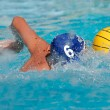 图库照片: Water polo player