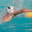 Water polo player - Foto de Stock