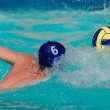 Water polo player — Stock Photo #5488998