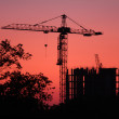 Crane at sunset. building background — Stock Photo