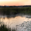 Royalty-Free Stock Photo: Panorama of the lake and sunset