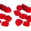 "Stock Photo: Word ""i miss you"" of rose petals isolated"