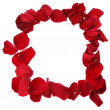 Frame of red rose petals isolated — Stock Photo