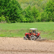 Rural field farming — Stock Photo