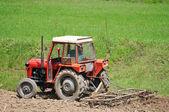 Rural field farming — Stock Photo