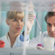 Science in bright lab — Stock Photo #5475863