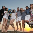 Stock Photo: Group of young enjoy summer party at the beach