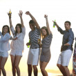 Group of young enjoy summer party at the beach — Stock Photo #5870036