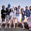 Group of young enjoy summer party at the beach — Stock Photo #6022772