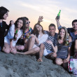 Group of young enjoy summer party at the beach — Stock Photo #6022854