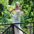 Beautiful bride outdoor — Stock Photo #6137557