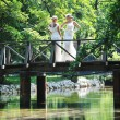 Foto de Stock  : Beautiful bride outdoor