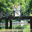 Beautiful bride outdoor — Foto de stock #6137598
