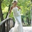 Beautiful bride outdoor — Stock Photo #6137617
