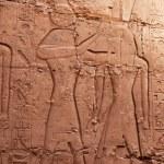 Hieroglyphs on the wall — Stock Photo