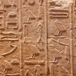Hieroglyphs on the wall — Stock Photo #6122783