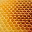 Bee wax clay - Stock Photo