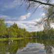 Sky reflection in pond — Stock Photo