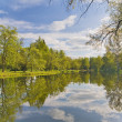 Trees and clouds reflection in pond — Stock Photo #6260323
