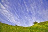 Green hills under blue sky — Stock Photo