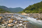 Mountain river in stones — Stock Photo