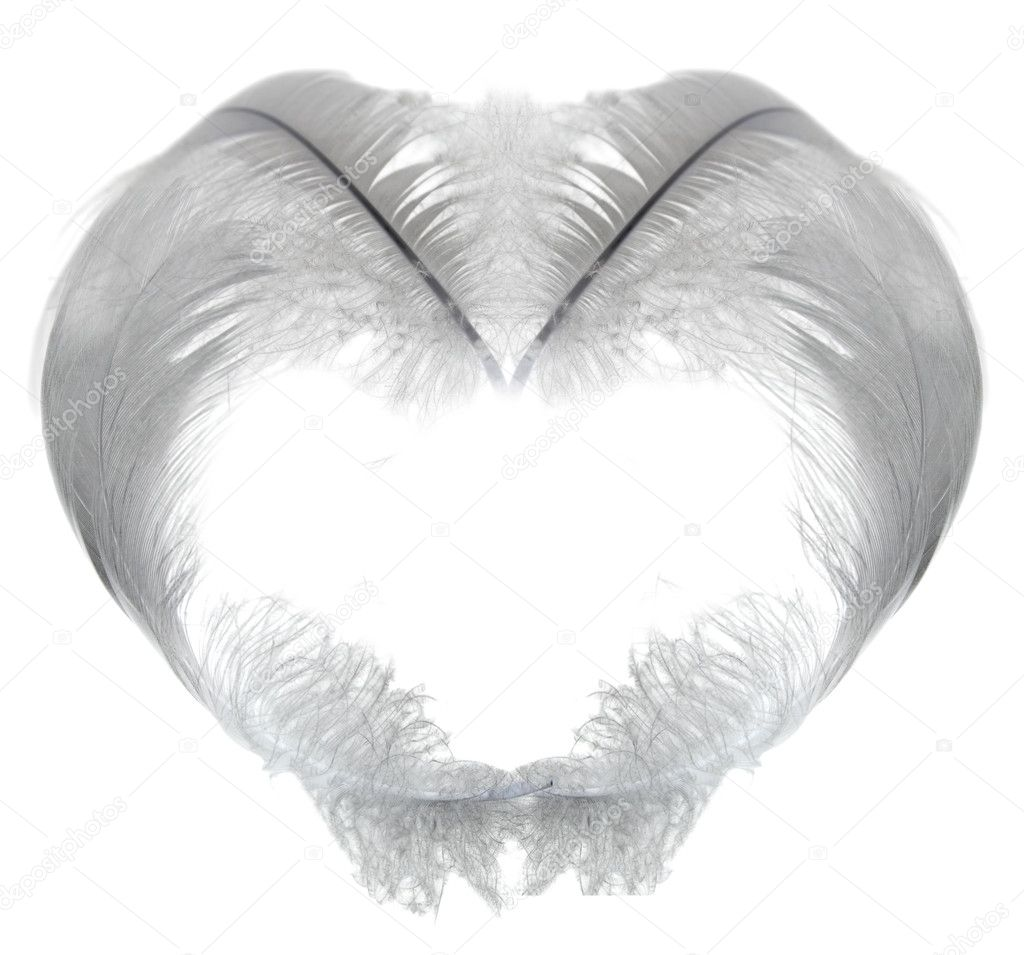 Isolated white feather heart — Stock Photo #6260191