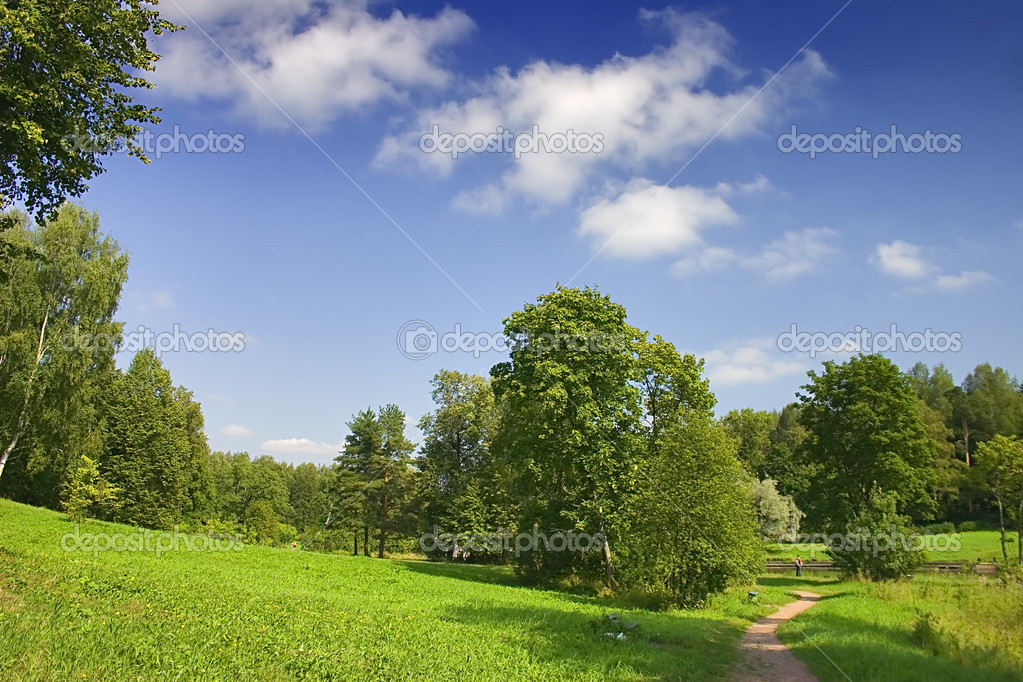 Landscape with blue sky, clouds and forest — Stock Photo #6260310