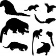 Small animal silhouettes collection — Stock Vector #6260575