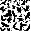 Thirty five flying birds — Stock Vector