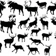 Twenty three deers — Stock Vector #6260701