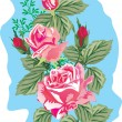 Royalty-Free Stock Vector Image: Five pink rose illustration