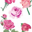 Royalty-Free Stock Vector Image: Five pink roses illustration