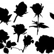 Ten black roses - Stock Vector
