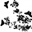 Cherry tree flowers and butterflies silhouette — Stock Vector
