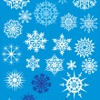 Twenty five light snowflakes — Stock Vector