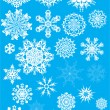 Twenty five snowflakes collection — Stock Vector