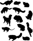 Thirteen cat silhouettes — Stock Vector