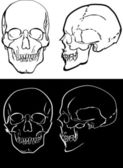 Black and white human skulls — ストックベクタ