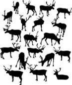 Nineteen deer silhouettes — Stock Vector
