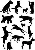 Thirteen dog silhouettes — Stock Vector