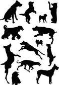 Thirteen dog silhouettes — Stock Vector