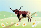 Stier auf kamille-feld — Stockvektor
