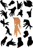 Human hands collection — Stock Vector
