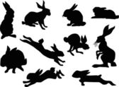 Rabbit silhouette collection — Stock Vector