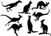 Eight kangaroo silhouettes — Stock Vector
