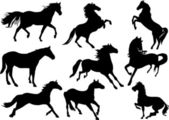 Set of nine horse silhouettes — Stock Vector